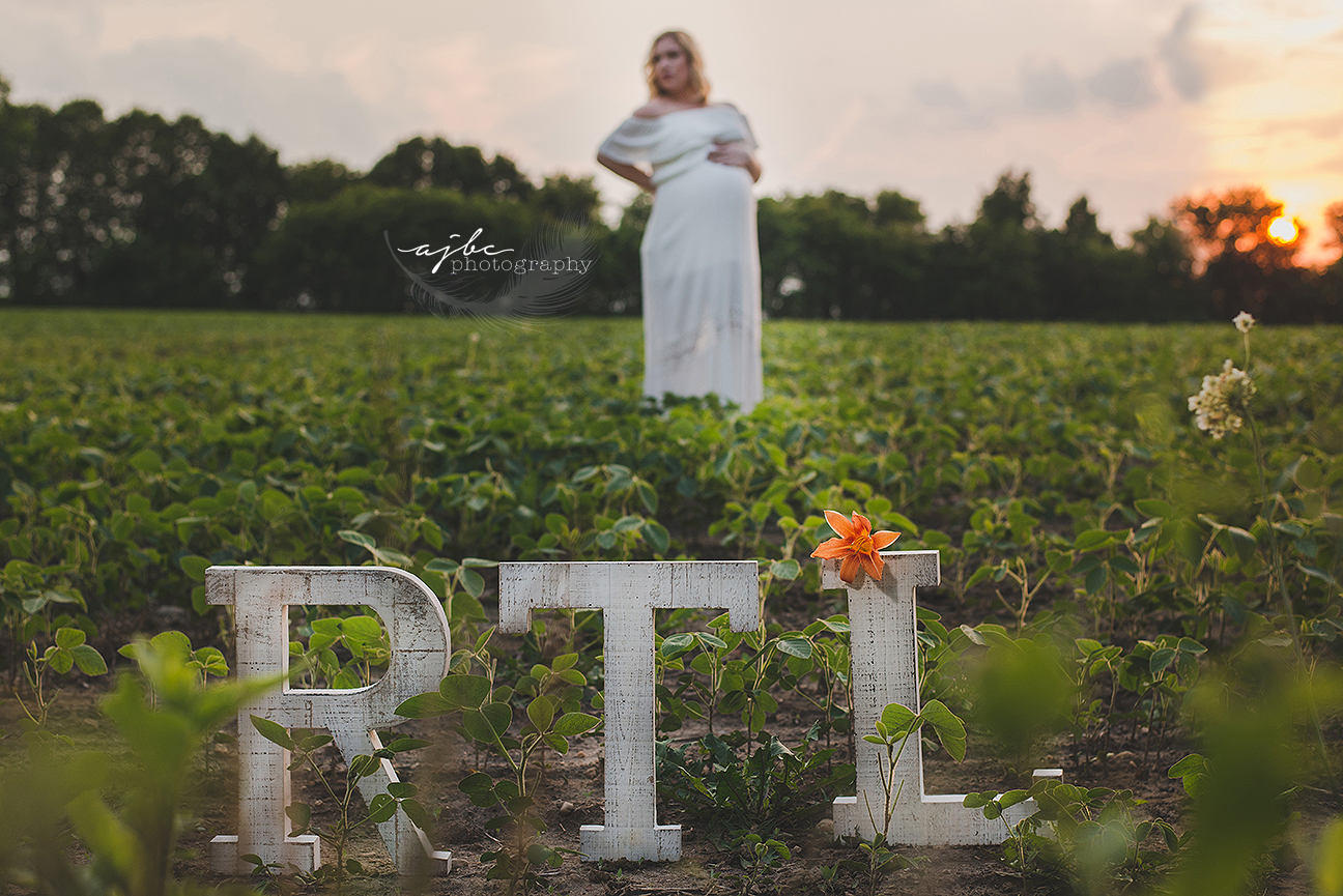 outdoor michigan maternity photoshoot.jpg
