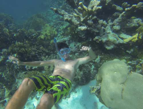 snorkel-reef.jpg