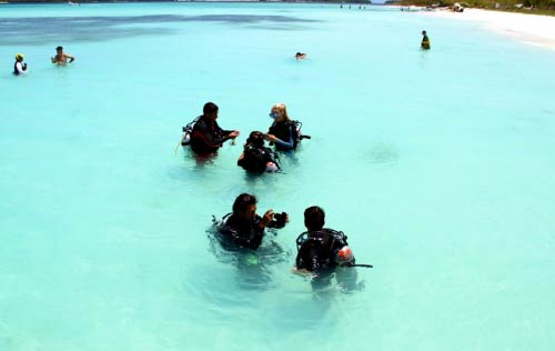 los-roques-scuba-dive.jpg