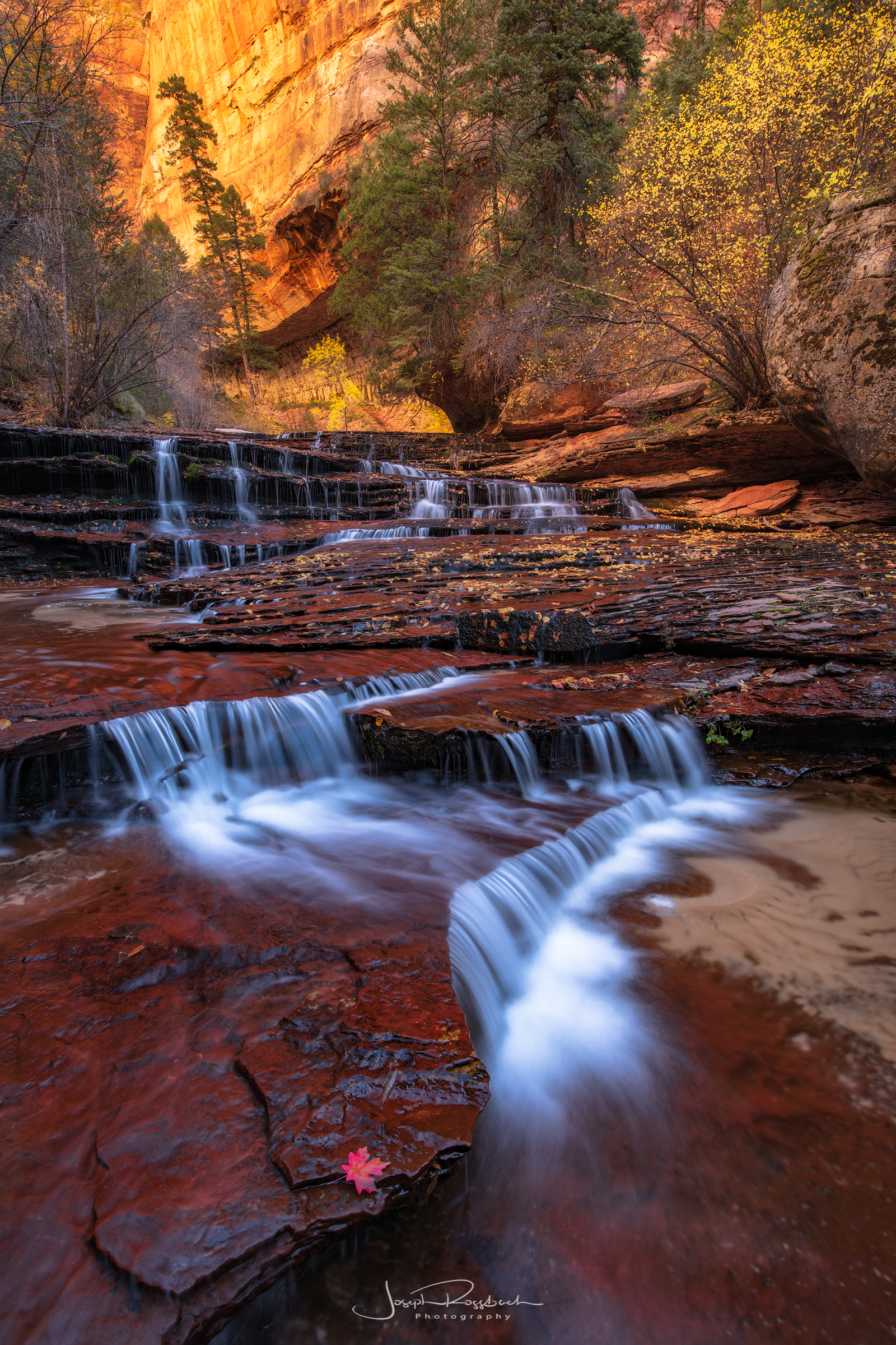 canyon-waterfall-autumn-color-zion.jpg