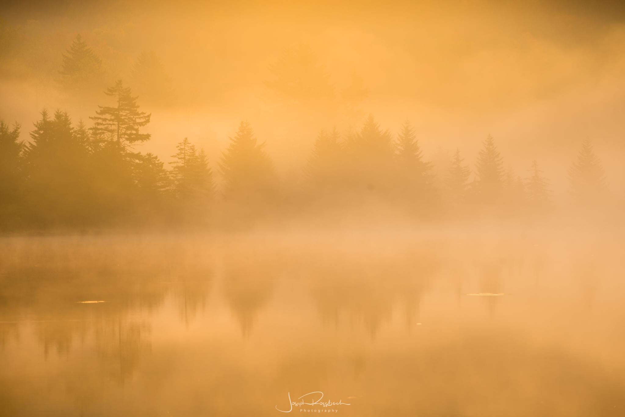 Sunrise on Spruce Knob Lake, Spruce Knob National Recreation Area