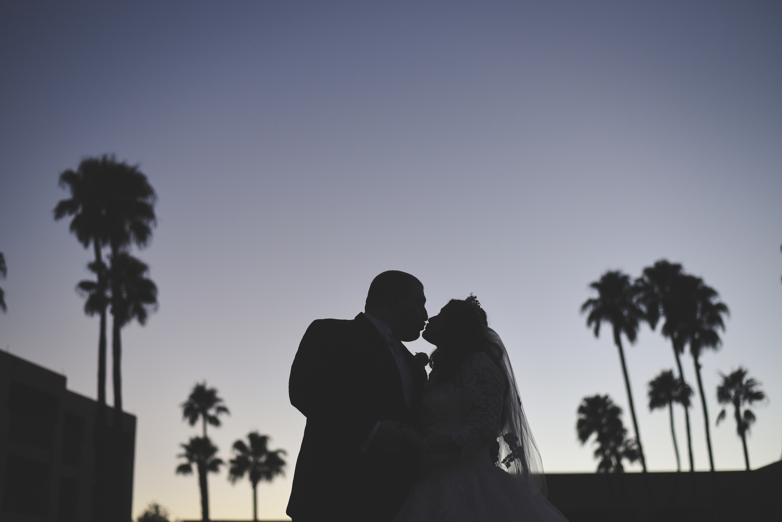 2015_phylicia_kevin_wedding (507 of 709).jpg