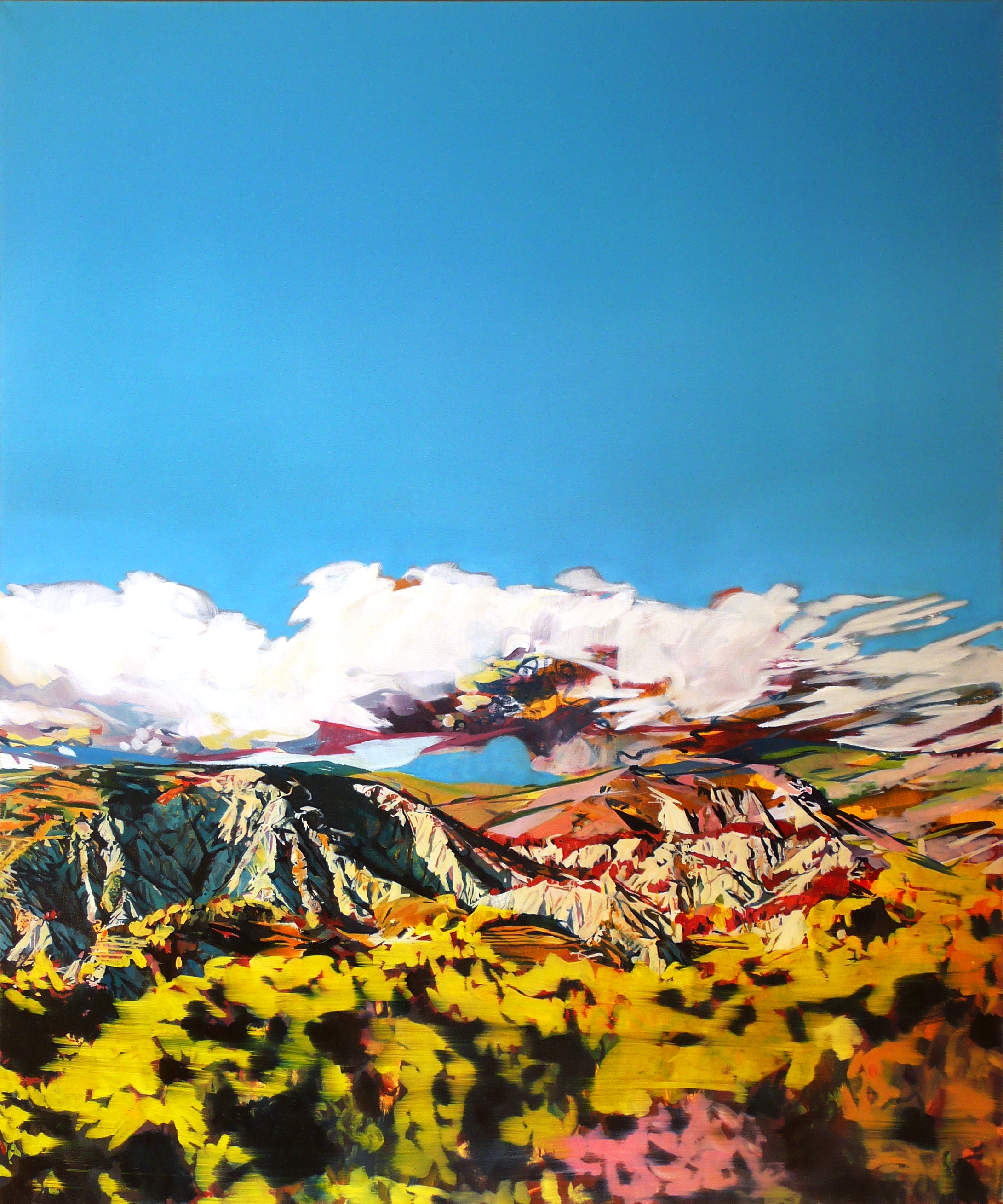 The Rise and Fall, 2010-11, oil on canvas, 120 x 100cm.