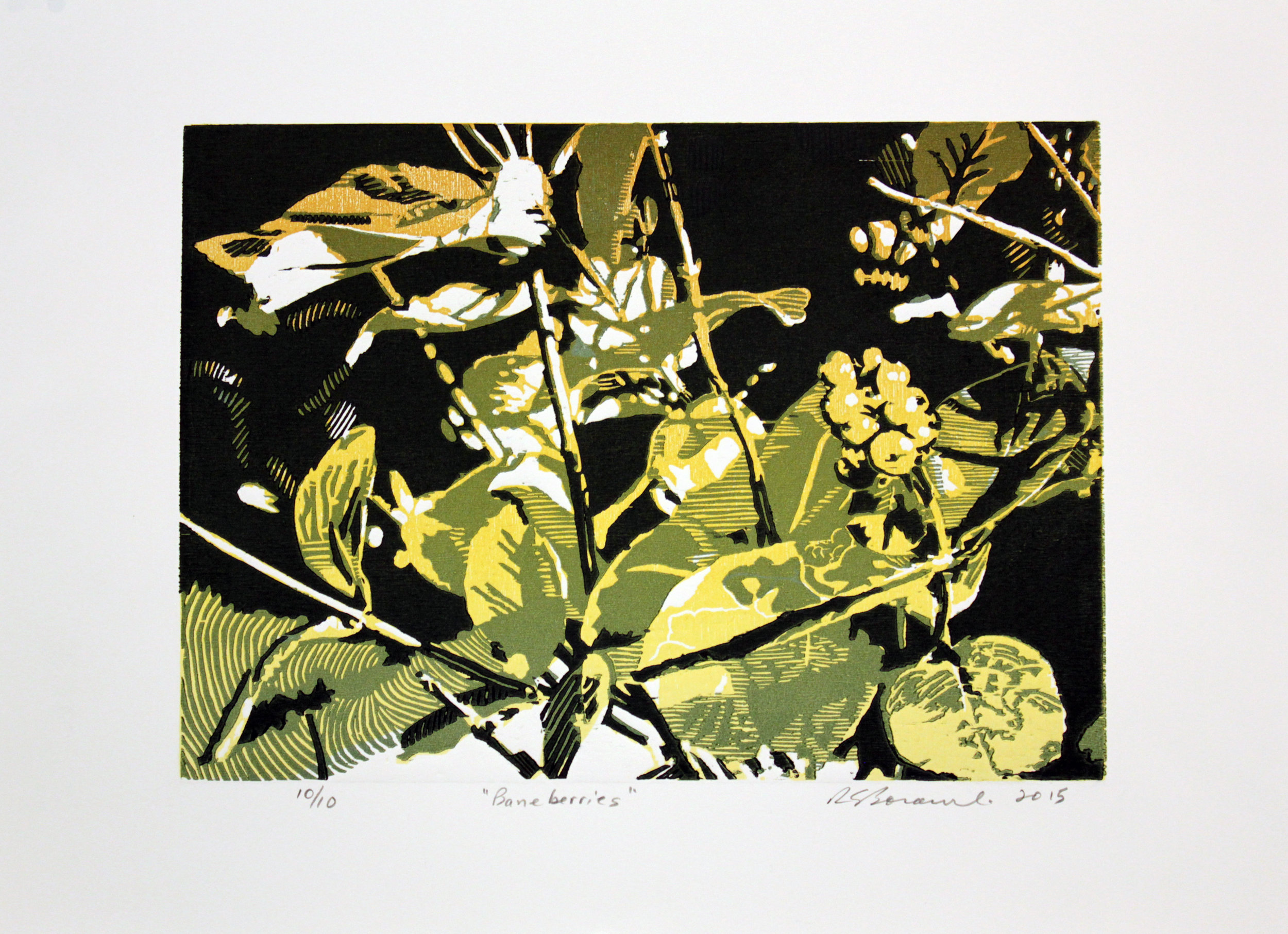 Title: Baneberries | Artist: Richard Borowski | Size:Paper: 15x20"