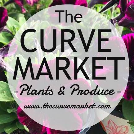 The Curve Market