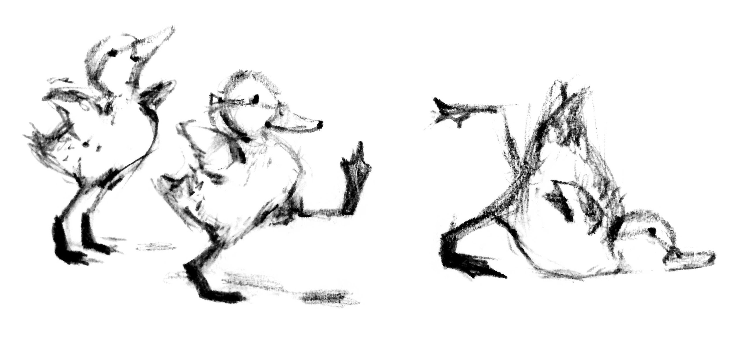 duck-stumbling.jpg