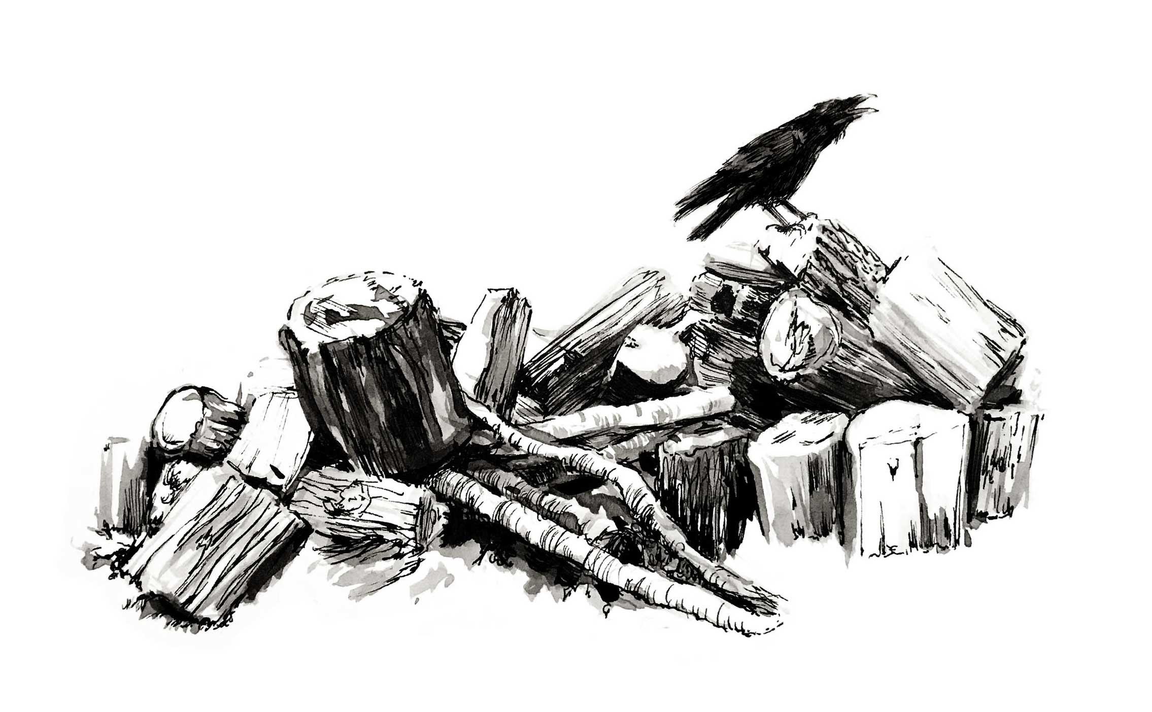 woodpile-crow-BW.jpg