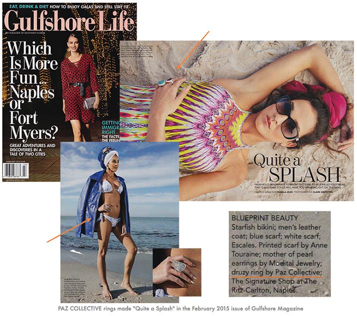 gulfshore-life-magazine-february-2015.jpg