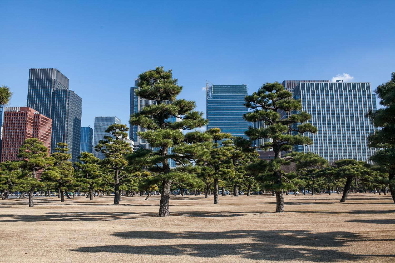 tokyo-168.jpg