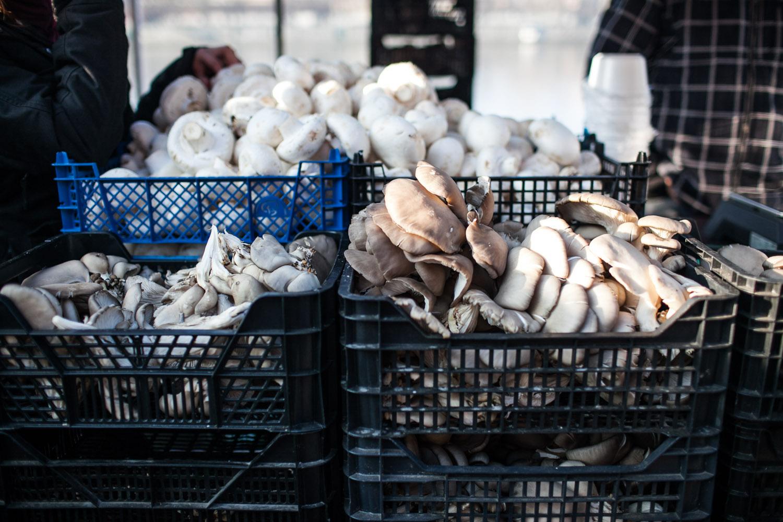 prague-farmers-markets