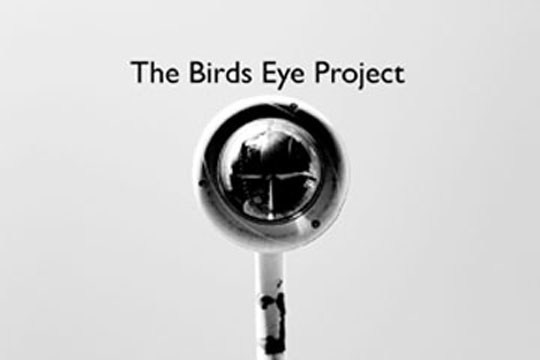 click above to visit  The Birds Eye Project