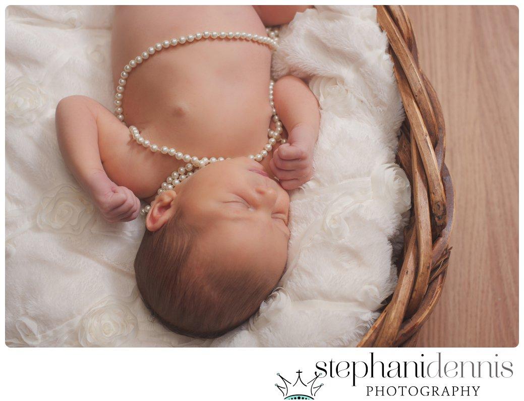 Stephani Dennis Photography