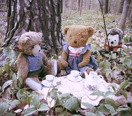 Knitting in the woods