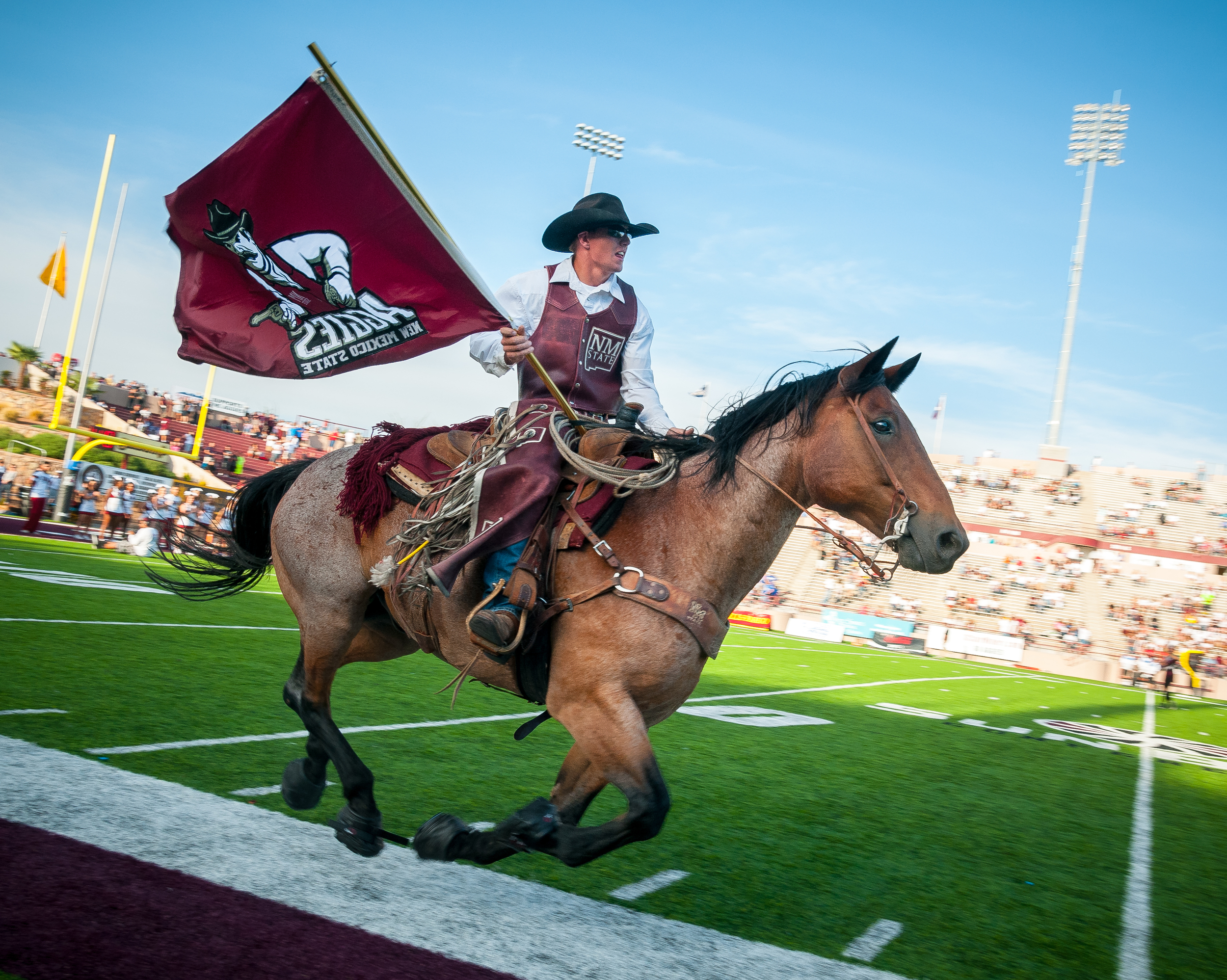 NMSU mascot Keystone does a lap around the field at Aggie Memorial Stadium before the Aggies versus Georgia State Panthers game.