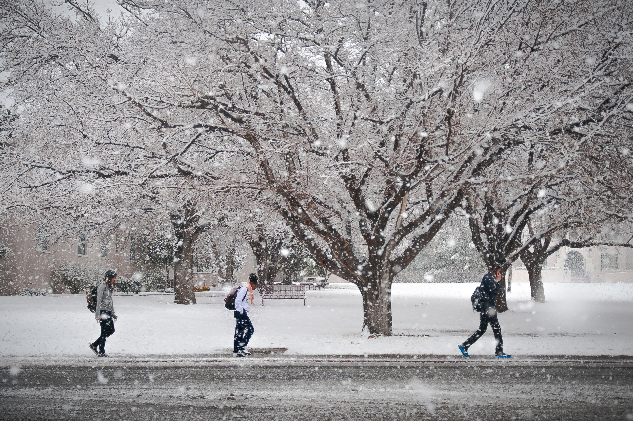 Students struggle through the snow on the New Mexico State University Campus in Las Cruces during a massive storm.