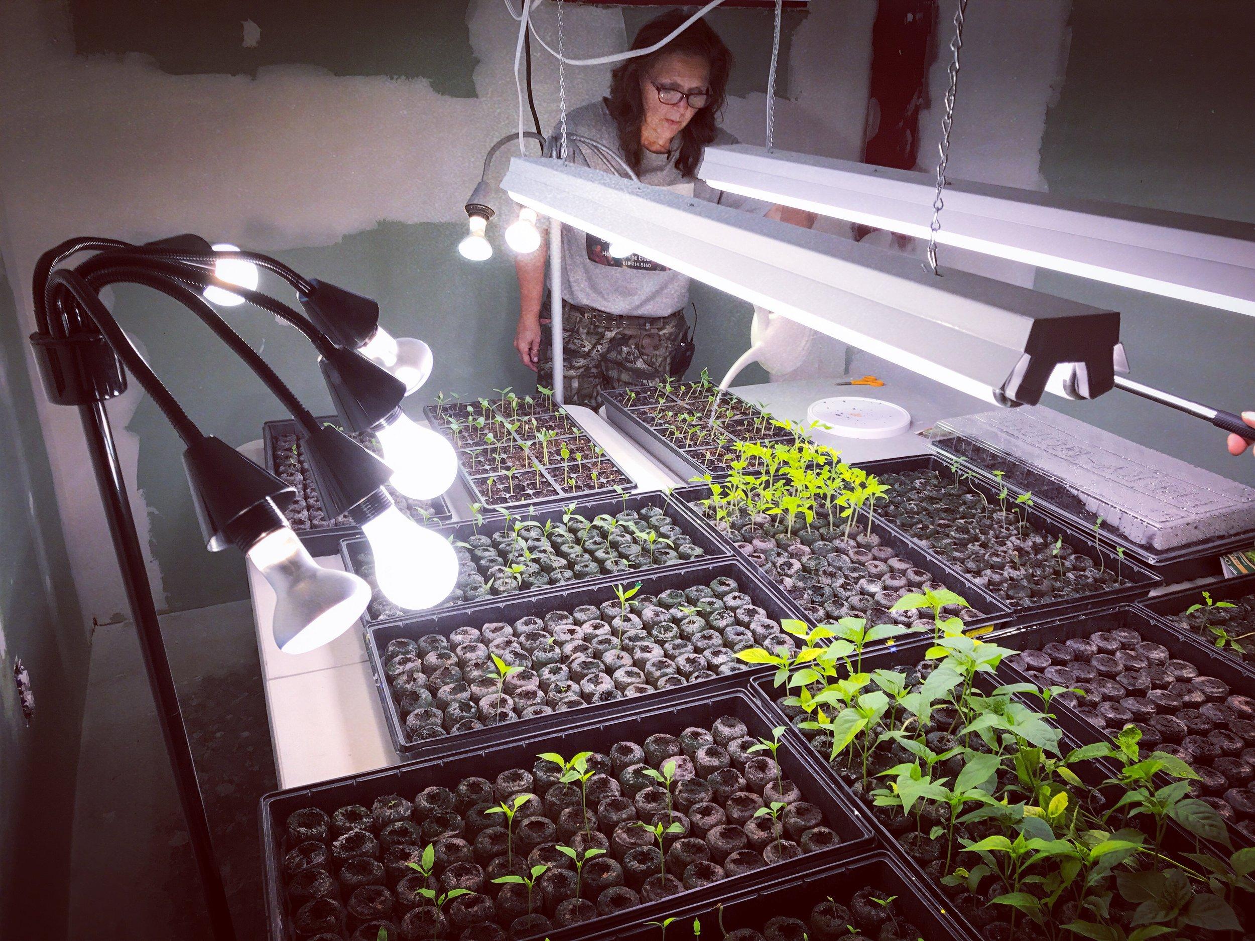 Debbra Arndt tends to her plants, O'Fallon, Missouri, April 11, 2107.
