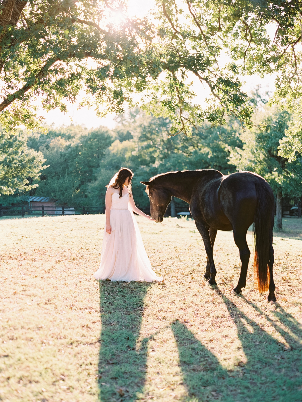 Outdoor Bridal session with Horses