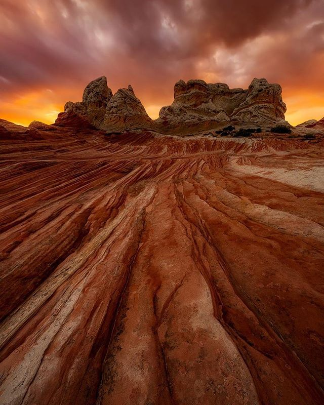 """Fire in the Southwest"" 👉 by @markmetternich I took this hand held with the Canon 11-24@11mm, while leading my ""Chasing Monsoon Light in the Great Southwest."" I took the shot to help some clients see the possibilities of the location. They all jumped on it immediately."" — Do you ever feel that way? Like you're just not sure where to start with a landscape scene? Then, when a Pro shows you what they see, you pounce all over the possibilities?? #alive_photo"