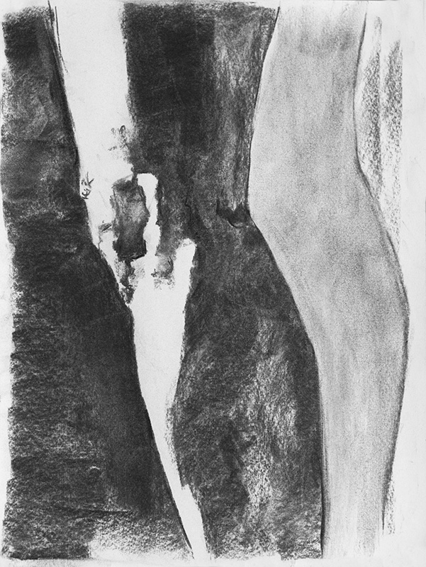 """""""The Mistress pt. 1"""" - 9"""" x 12"""" Charcoal on paper, from life. 2014"""