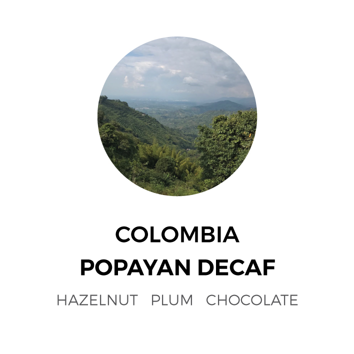 ColombiaDecaf.jpg