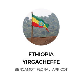 Ethiopia-Yigacheffe.jpg