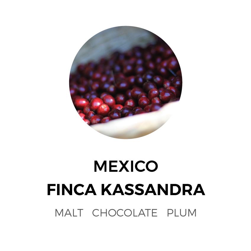 Mexico-FincaKassandra.jpg