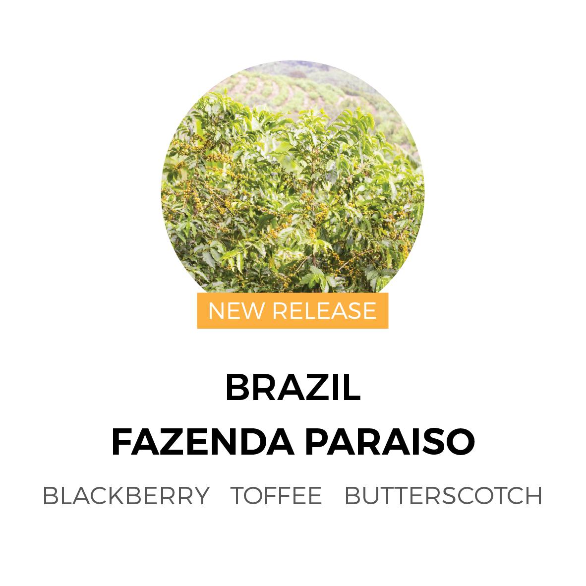 BrazilFazendaParaisoNewRelease-01.jpg