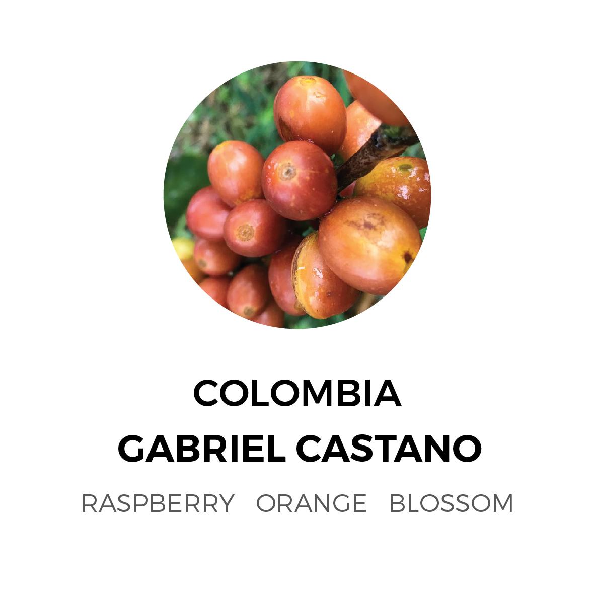 Colombia-Gabriel-Castano-01-01.jpg