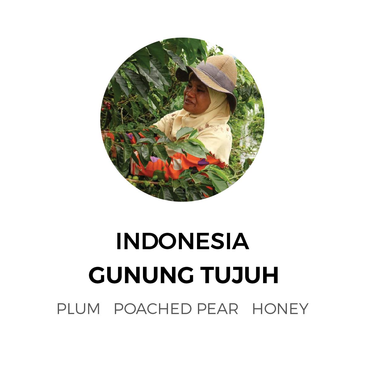 Indonesia-Gunung-01.jpg