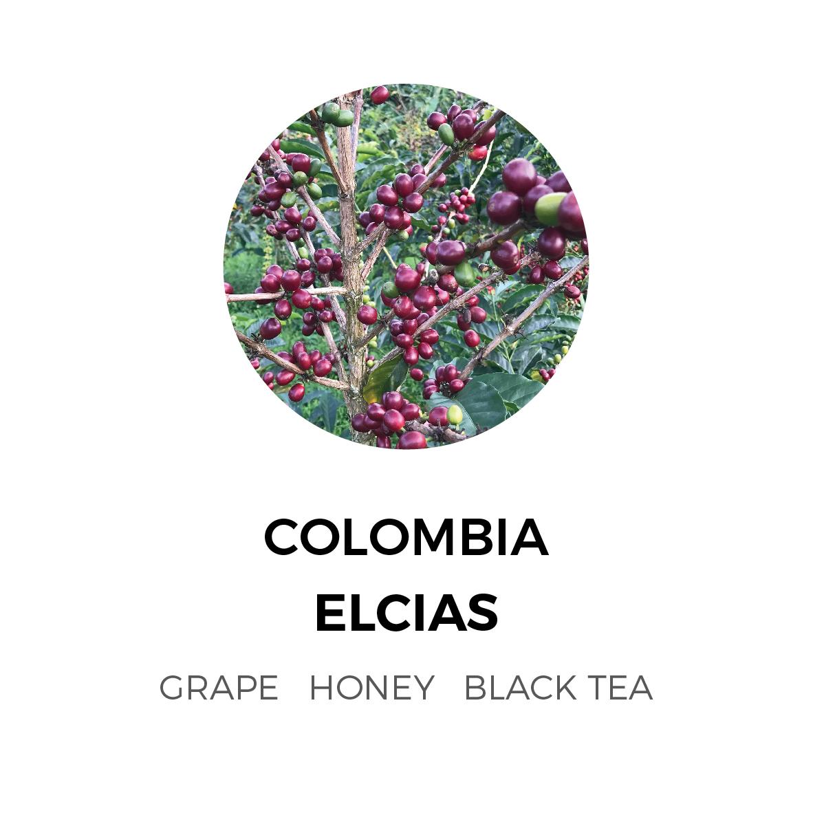 Colombia-Elcias-Gesha-01-01.jpg