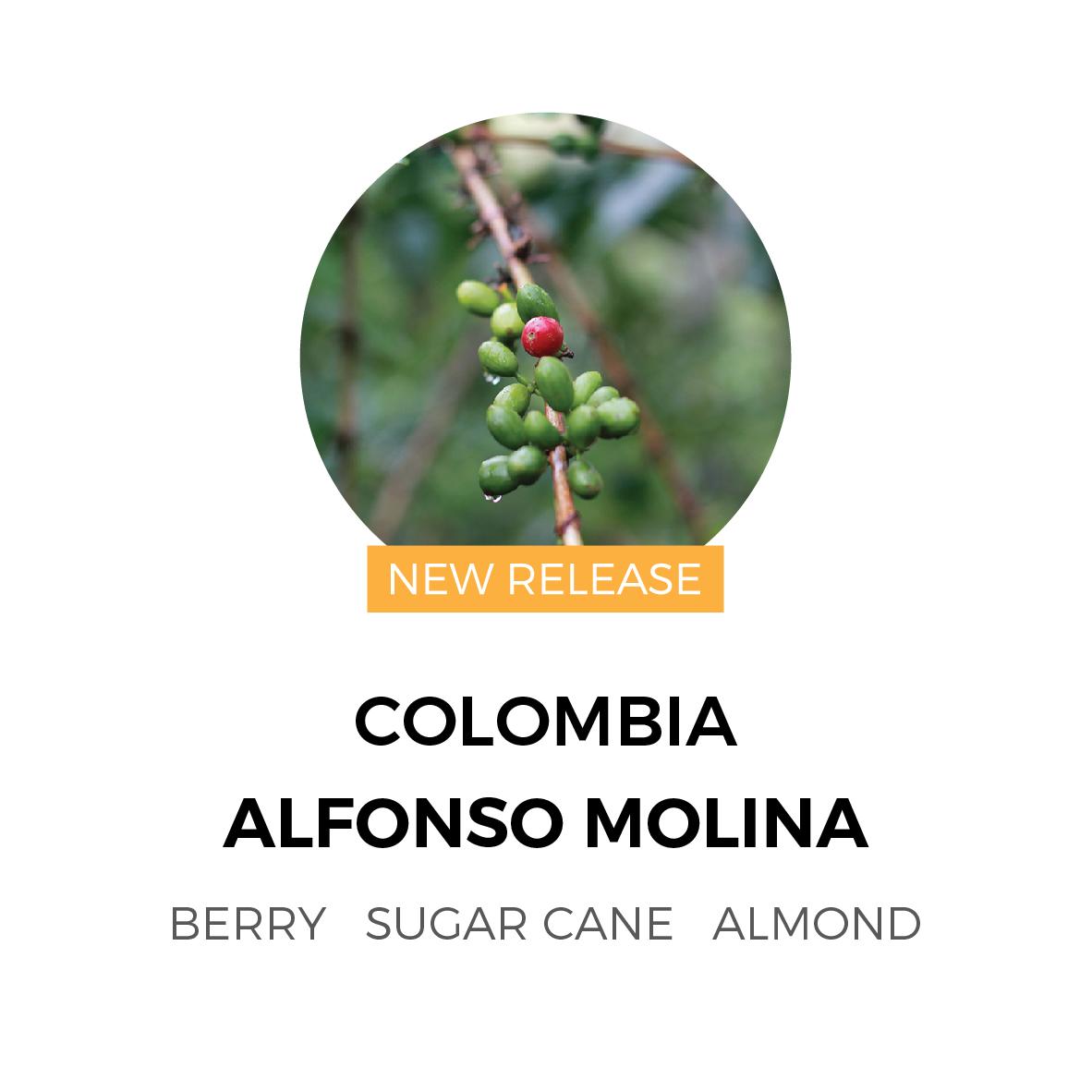 ColombiaAlfonsoMolina-01.jpg