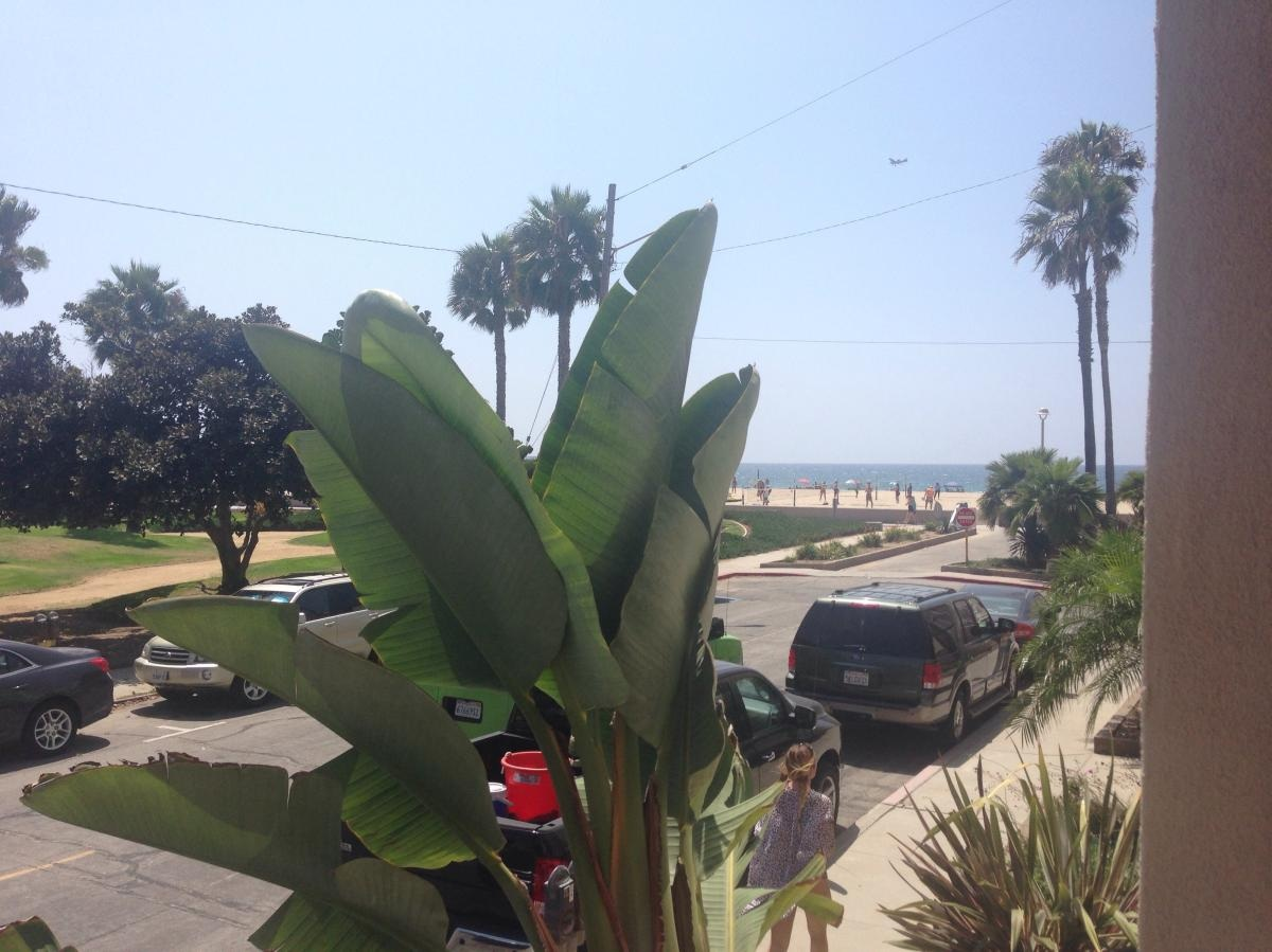 Beach Life! - Call Aneta for showing at 310-926-6115.