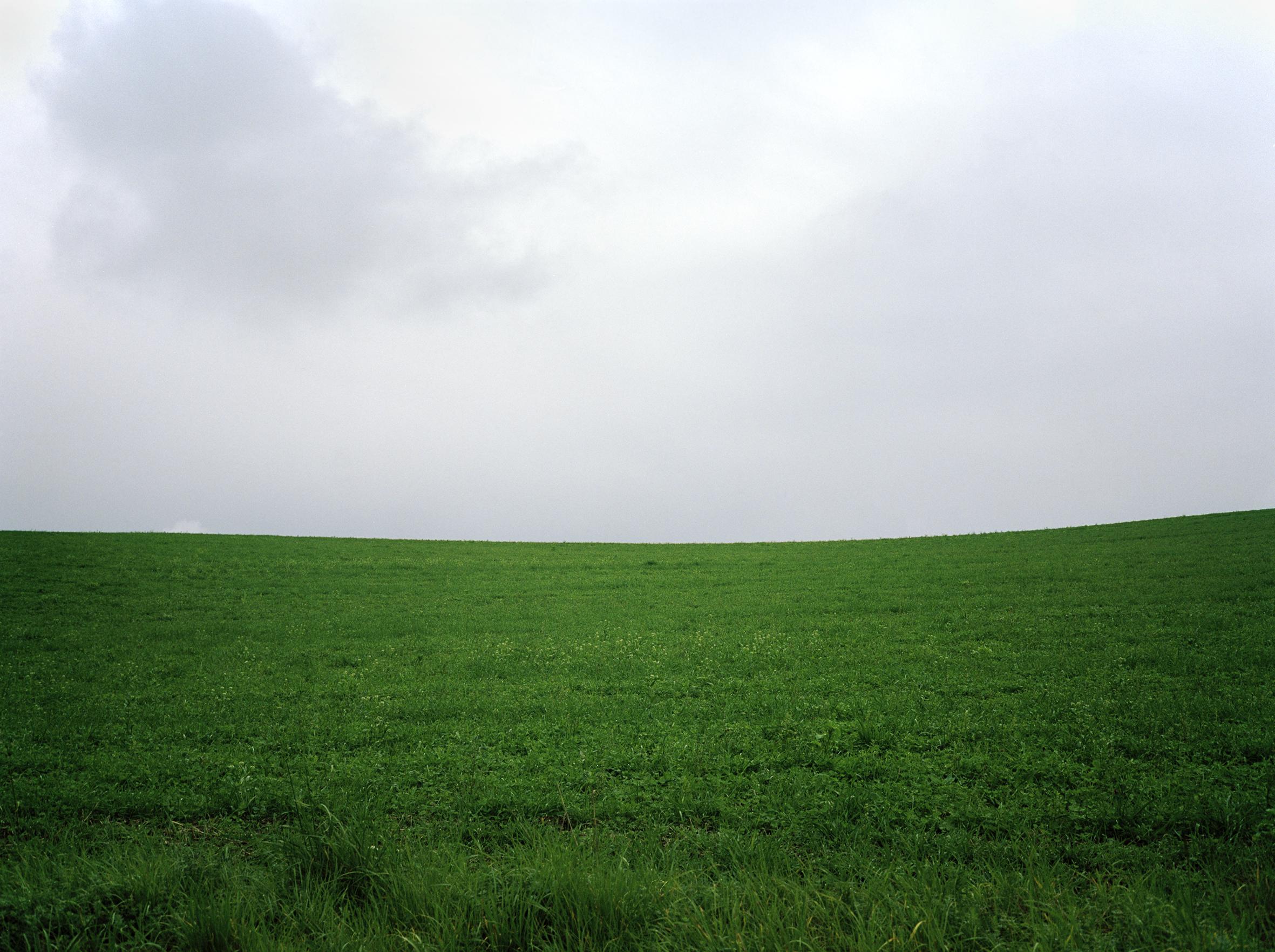 Czech_Field.jpg