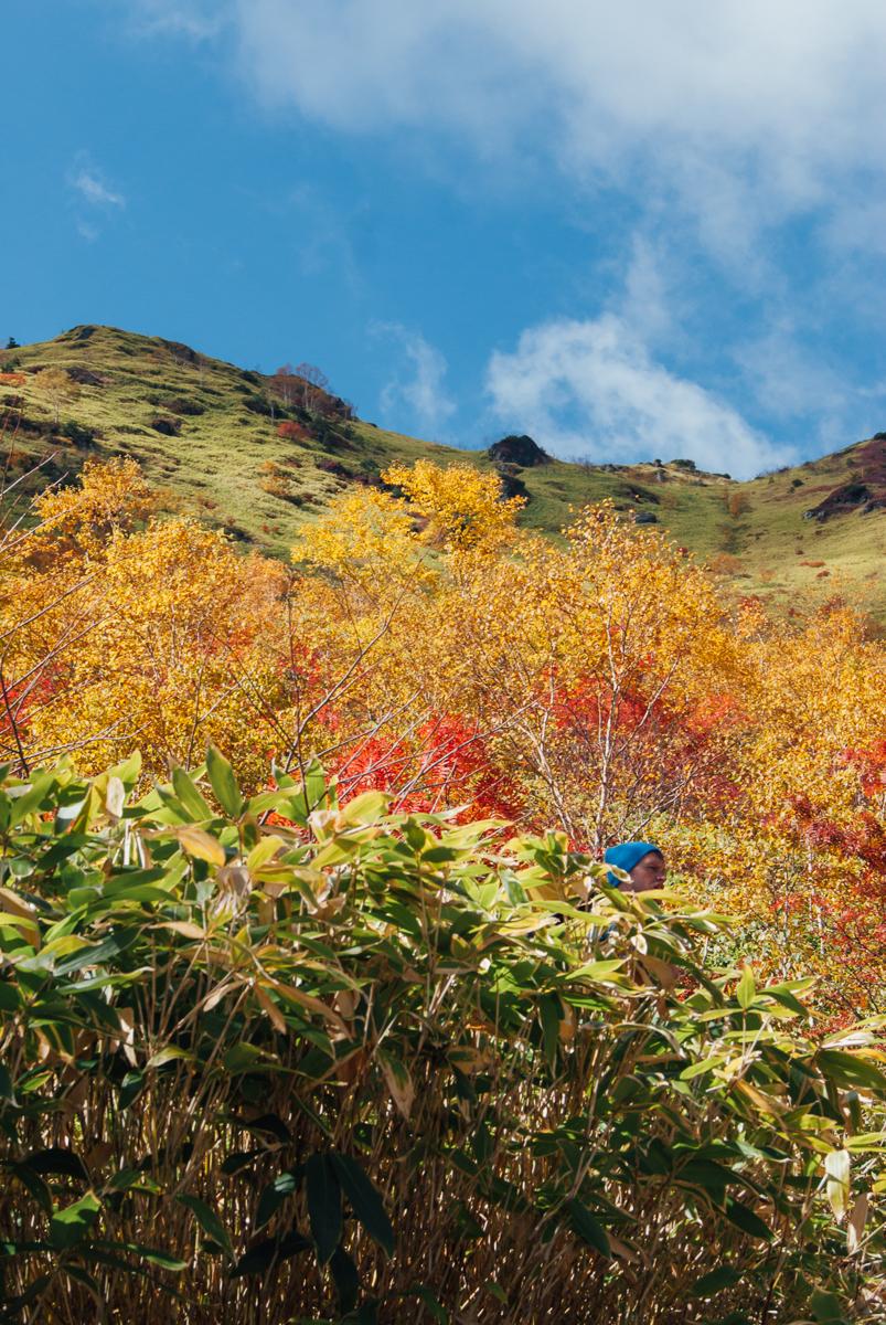 2015-10-08-Yakedake-Hike-05580-1200.jpg