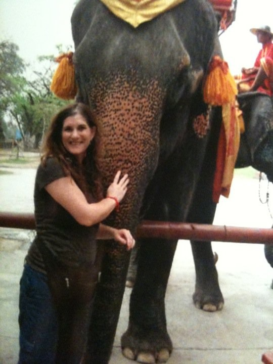 Riding Elephant In Thailand
