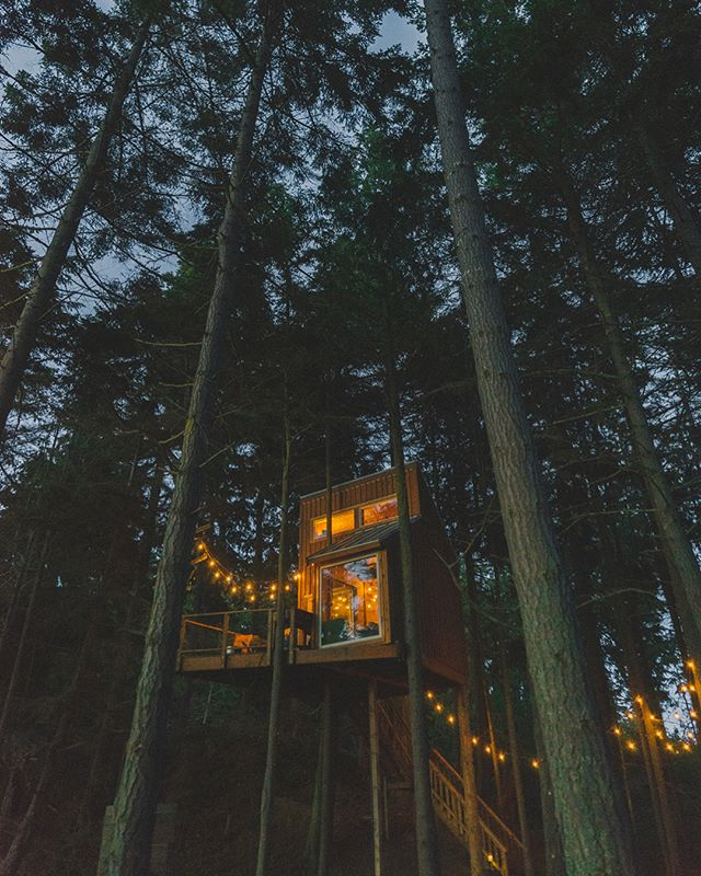 Second digs near Port Angeles, WA sitting high above the ocean, straight across from Victoria, BC. No bathroom up top, but it has WiFi 🤷🏻‍♀️ • • • • #cabin #ocean #oceanfront #treehouse #liveyouradventure #washington #pnw #pnwlife #pnwonderland #pnwdiscovered #nw #northwest #hut #room #cottage #cottages #shack #cabins #cabinlife #cabinporn #cabinlove #cabinvibes #treehouselife #cabinlove #thecabinchronicles #thecabin