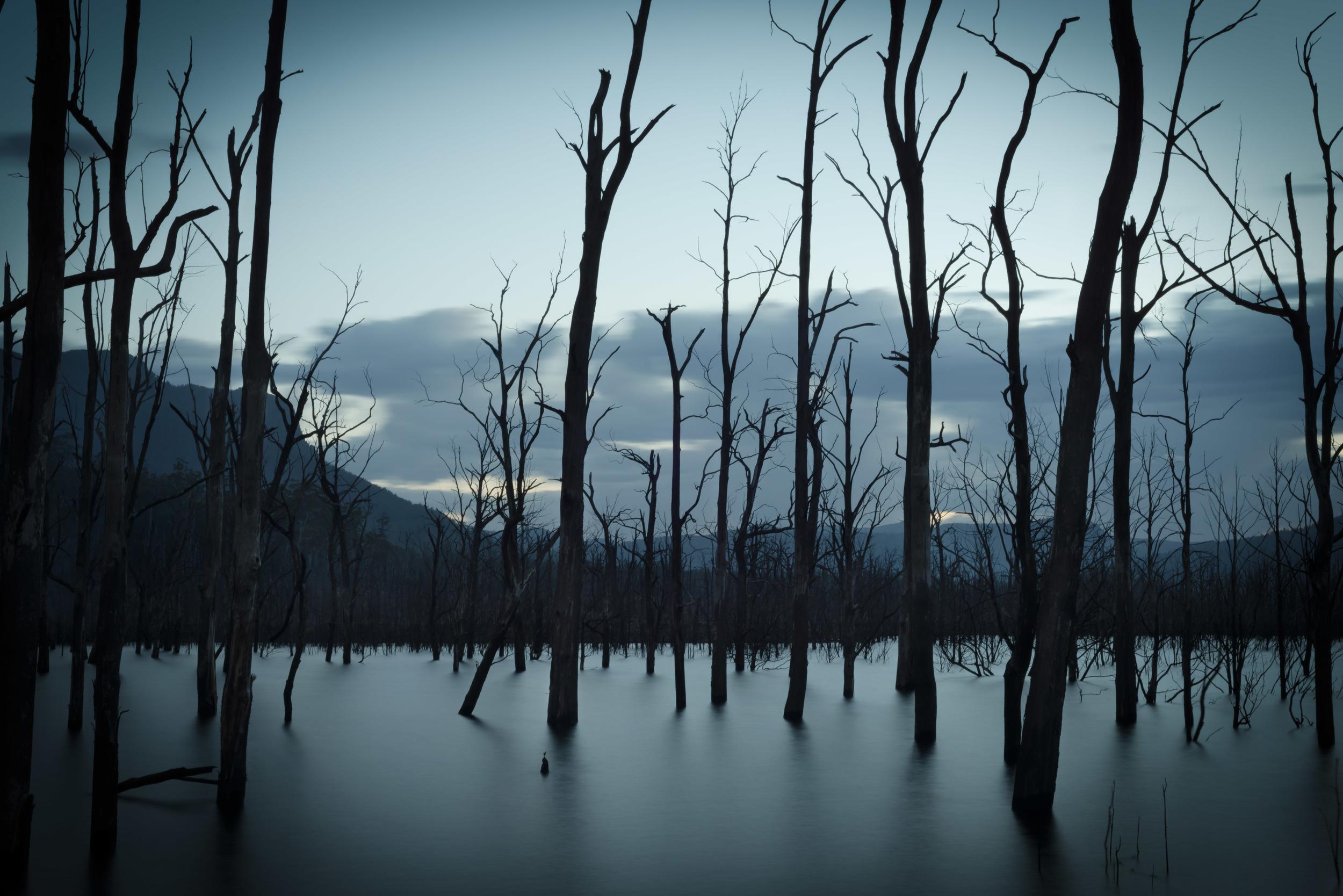lake Rowallen.jpg