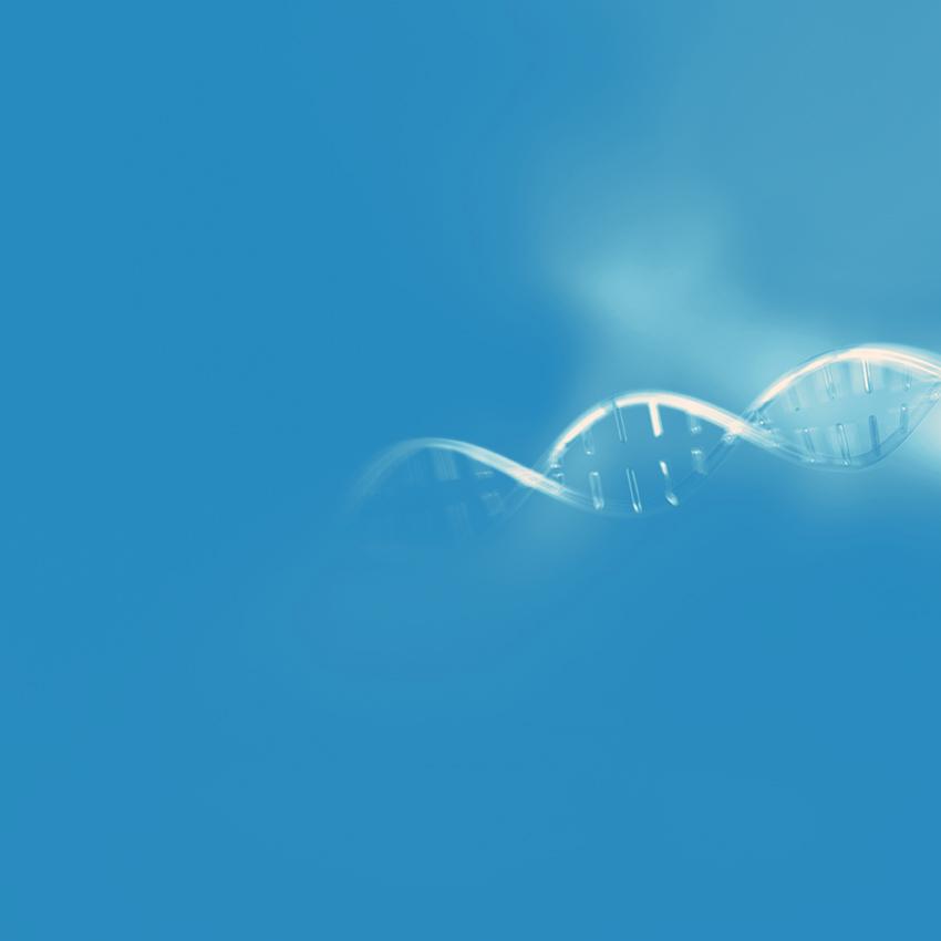 Tumour Sphere Units Test