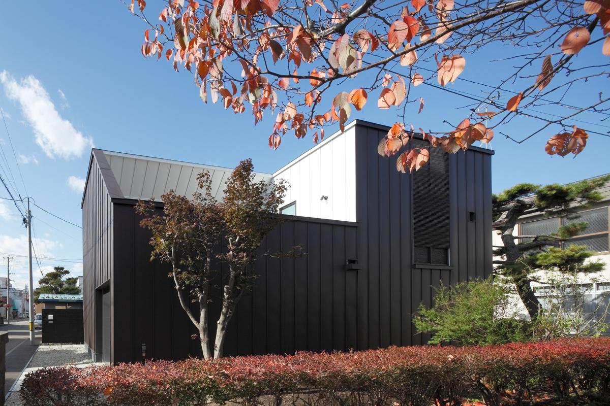 Sakura House 2009