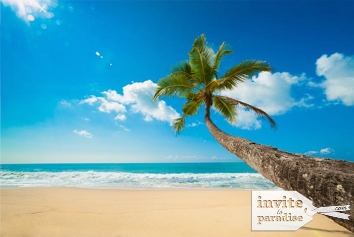 Enjoy beaches that are so often empty.