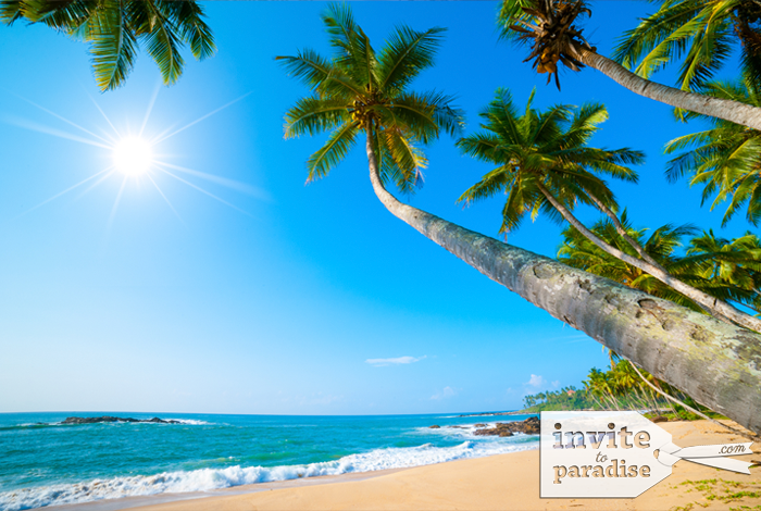 Invite-to-Paradise-Beach-6.png