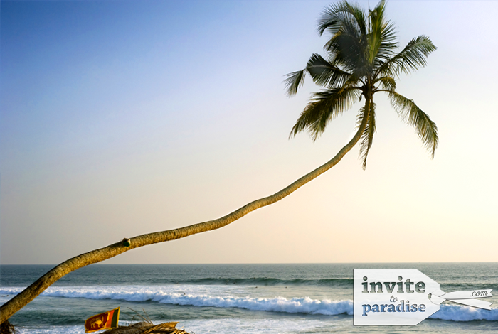 Invite-to-Paradise-Beach-12.png