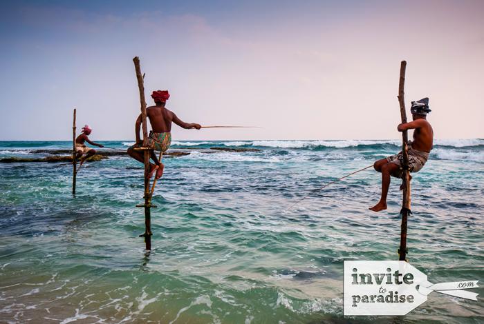 See native stilt fishermen