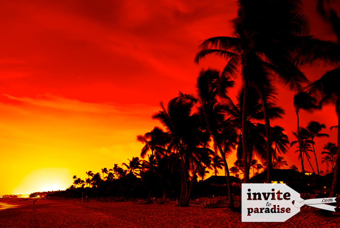 See stunning colourful sunsets.