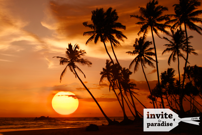 Invite-to-Paradise-Beach-24.png