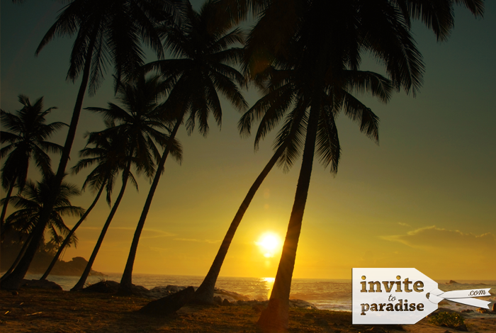 Invite-to-Paradise-Beach-25.png