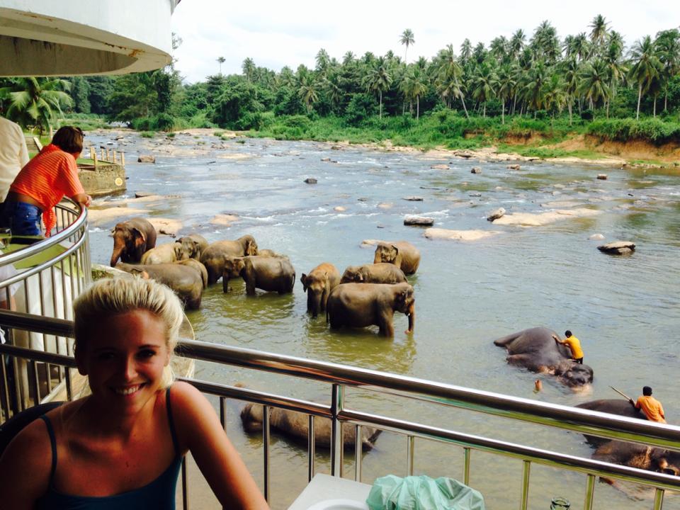 pinnawala-elephant-orphanage-sri-lanka-invite-to-paradise-honeymoon-couple-3.jpg