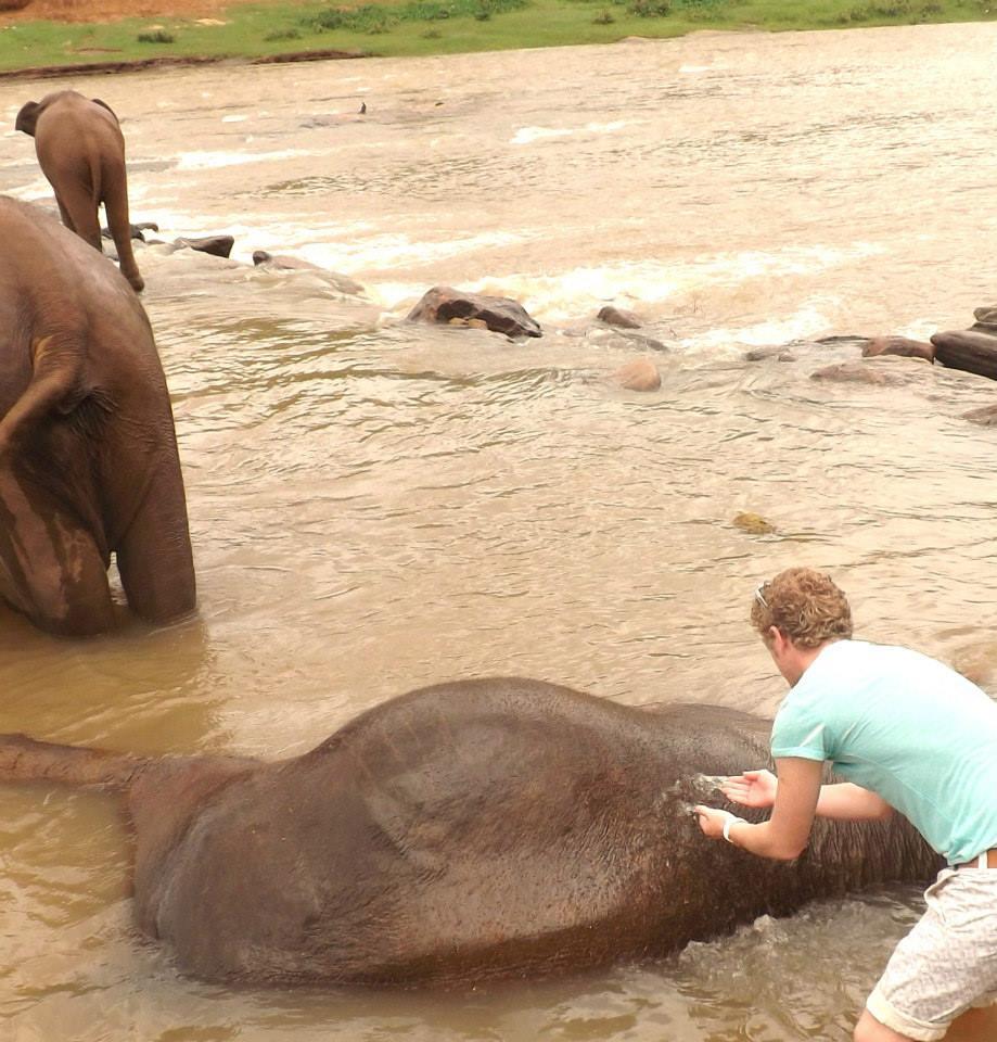 pinnawala-elephant-orphanage-sri-lanka-invite-to-paradise-honeymoon-couple-12.jpg