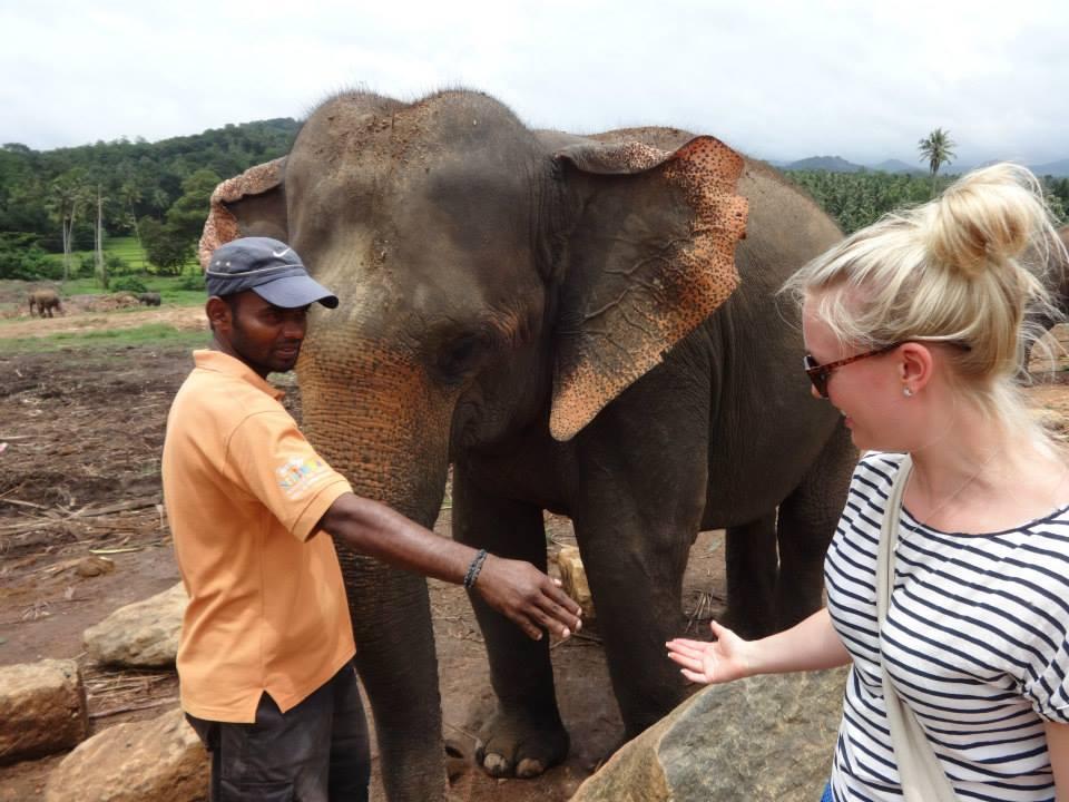 pinnawala-elephant-orphanage-sri-lanka-invite-to-paradise-honeymoon-couple-17.jpg