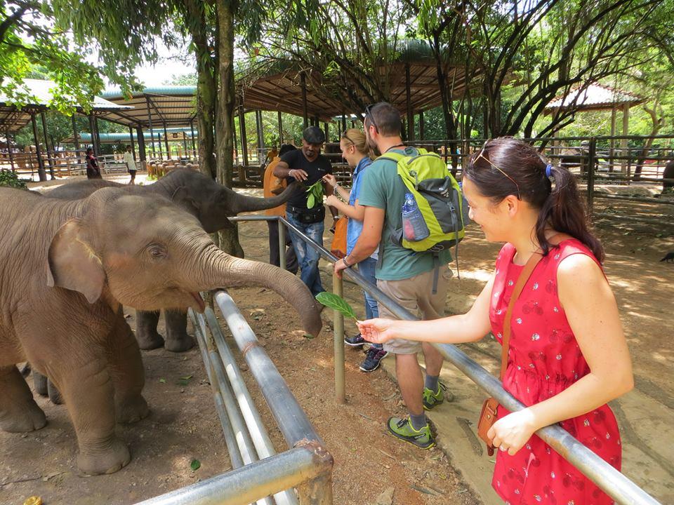 invite-to-paradise-holiday-honeymoon-sri-lanka-couple-october-17.jpg